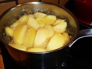 Pommes pochées au sirop vanillé soit cuite au four avec du beurre et du sucre