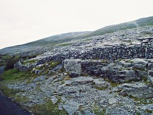 Burren landscape - Limestone Walls along the coast road