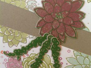 [SU#2] Duo de cartes succulentes