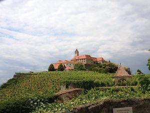 Le château de RIEGERSBURG