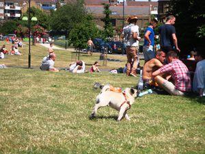 Pride in London - Vauxhall park