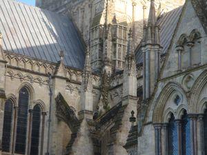 Salisbury's cathedral