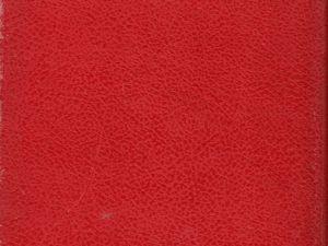 """J.-H. Rosny aîné """"Le Félin géant"""" (Gedalge - 1954) [Grand cartonnage rouge]"""