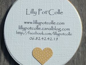 Lilly pot'colle - challenge