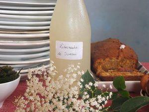 Dégustation de limonade de sureau, de mélisse et d'orties &#x3B; la photo officielle avec les membres du bureau et les intervenants