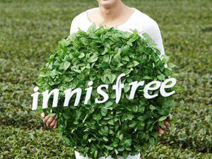 Les modèles Innisfree, l'essence à base de soja