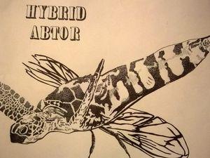 création d'un hybrid, tête de tortue avec un corps d'abeille.  Détails de la texture en multitude de points fait au stylo micron