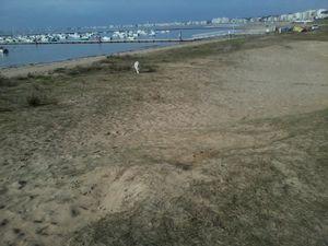 petit port et dunes de  Pornichet