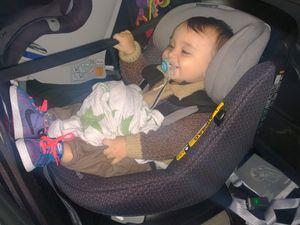 Les premières photos avec baby Securange :) 17 mois env. 80cm