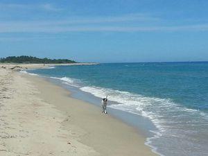 Solaro que ta plage est belle