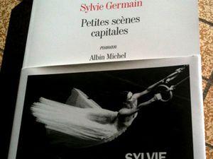 Crédit (seconde vignette) : www.lexpress.fr/culture/livre/sylvie-germain-comme-l-oiseau_1278868.html
