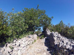 Sauve (30) : mer des rochers et gorges du Crespenou