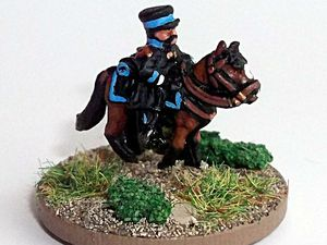 Waterloo 2015 : Le duc de Brunswick.