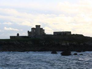 Je n'étais pas seule, j'y ai vu un dromadaire, un goéland, une ombre, un château et surtout la mer