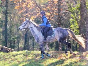 Course N°4: Stéphane contre Lucas/Gulysse, les jambes du fougueux vététiste ont eu raison du cheval, vainqueur Stéphane