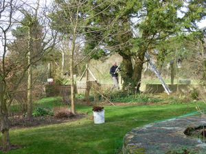 Grandes manoeuvres au jardin