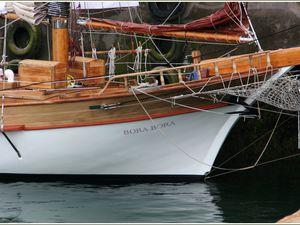 283 - Rencontres bateaux au fil de l'eau 14ème 2016 07 20 Photos © GeoMar voiliers traditionnels, escale port du Rosmeur, fêtes maritimes Douarnenez