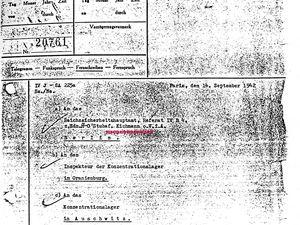"""Daisy, 17 ans, elle boitait suite à une polio, elle avait un vélo adapté pour elle..... -----> Auschwitz. Esther, 58 ans, elle était hospitalisée, sur un brancard elle a quitté l'hôpital de Saintes... -------> Auschwitz. Comme 17 Saintais. Un escalier qu'ont descendu un matin bien noir, tous les membres de la famille Angel.... -------> Auschwitz. Le fils de Mosko Swzarchberg n'avait plus de nouvelles de son père, il a cherché en vain ---------> Auschwitz (voir un document trouvé au cours de ses investigations).. avec le nom d'Eichmann et une quantité....... ----> Transport de 1000 Juden (juifs) par le train. """" Ne les oublions -pas """". On ne l'a pas vécu mais on a encore mal."""" On n'était pas présumé mort à Auschwitz """" """" A Auschwitz on ne meurt pas, on est assassiné """". Les assassins nous n'en voulons plus sur notre terre."""