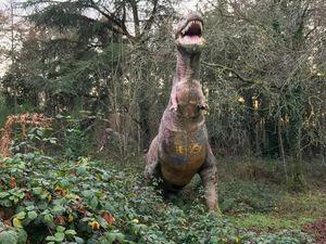 En forêt, au bord de la D29, qui relie Plougastel à Landerneau, tomber nez à nez avec un tyrannosaure...