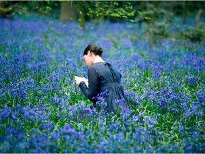 Le poète anglais John KEATS (mort à 25 ans) et Fanny : leur amour contrarié dans un film excellent de Jane Campion de 2009
