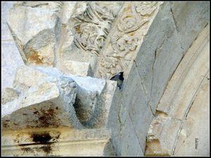 Les chapiteaux romains ont en vu d'autres!!!..Pour les regarder de plus près cliquer sur l'image