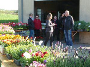 Marché aux fleurs et pièce de théâtre
