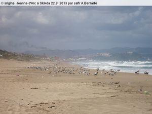 Quai...La plage de Jeanne d'Arc (Skikda) dans la basse saison