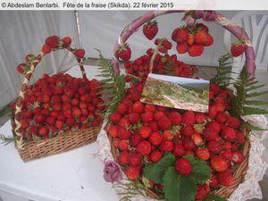 Vagues...Fête de la Fraise à Skikda pour 2015 (actualisé)