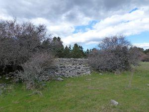 Le jas en ruine
