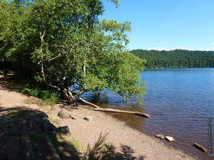 Le sentier au bord du lac...