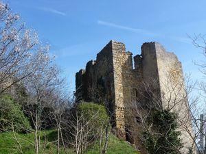 Une vue vertigineuse sur le château...nous sommes en contrebas.