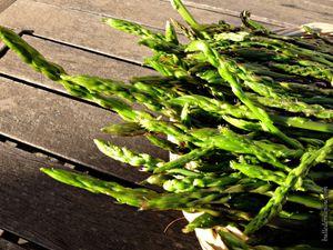 Ma récolte d'asperges sauvages du week-end dernier