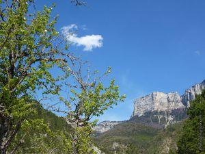 Le chemin monte vers le plateau du Vercors après le hameau des Liotards...