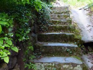 Le chemin de l'Espérou