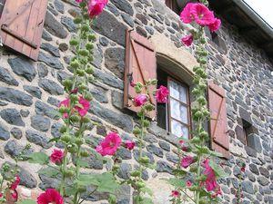 Un aperçu des différentes maisons du hameau