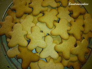 Ti'Biscuit aux épices de Noël