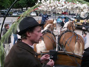 """""""Au delà d'une vision """"éco-responsable"""", la Municipalité de Maxéville a voulu une cité fière des """"savoir-faire"""" français: sauvegarder des métiers: éleveurs, maréchal-ferrant, sellerie, meneurs""""...  (2 emplois créés ici)..."""