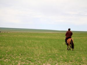 Mongolian pieces of life in the Naiman Nuur - Part 2