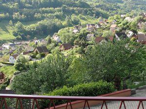 Alsace :vin, villages, châteaux, Cathédrale  et cigognes