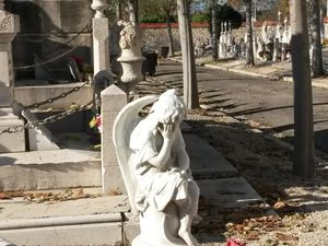 At Le Canet Cimetary where pensive angels seem widely popular