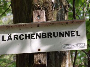 LE BRUNNENTHAL - LA GROTTE DE DANNE