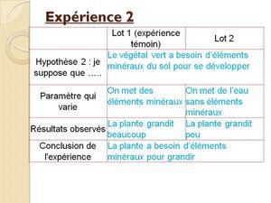Leçon 3 : La production de matière organique par les végétaux