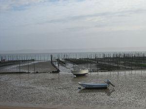 C'est marée basse &#x3B; je tombe sous une sorte d'enchantement