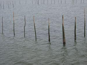 Marée basse et marée haute