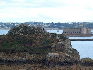 Carte postale de Bretagne : Le château du taureau