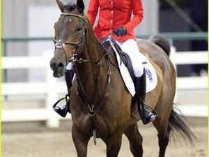 Nikki Reed : The Sunday Horse