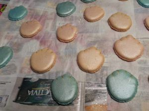 MACARONS COQUILLAGE