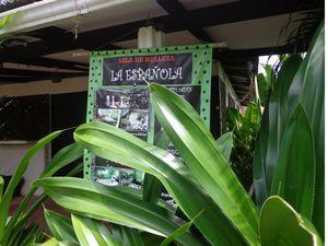 Costa Rica - Jour 7 : destination Tortuguero