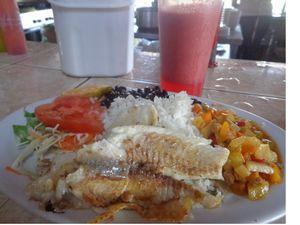 Costa Rica - Jour 14 :  Quepos, fin du séjour.