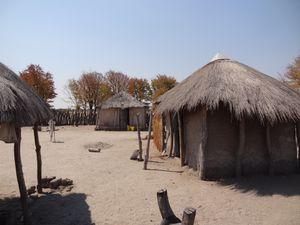 de Gweta à Kubu island (ou Lekhubu c'est pareil). Le plus grand pan salé du môôônde, disent-ils !